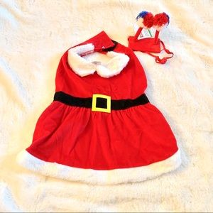 Santa Dog Dress Head gear Christmas M/ L Red White